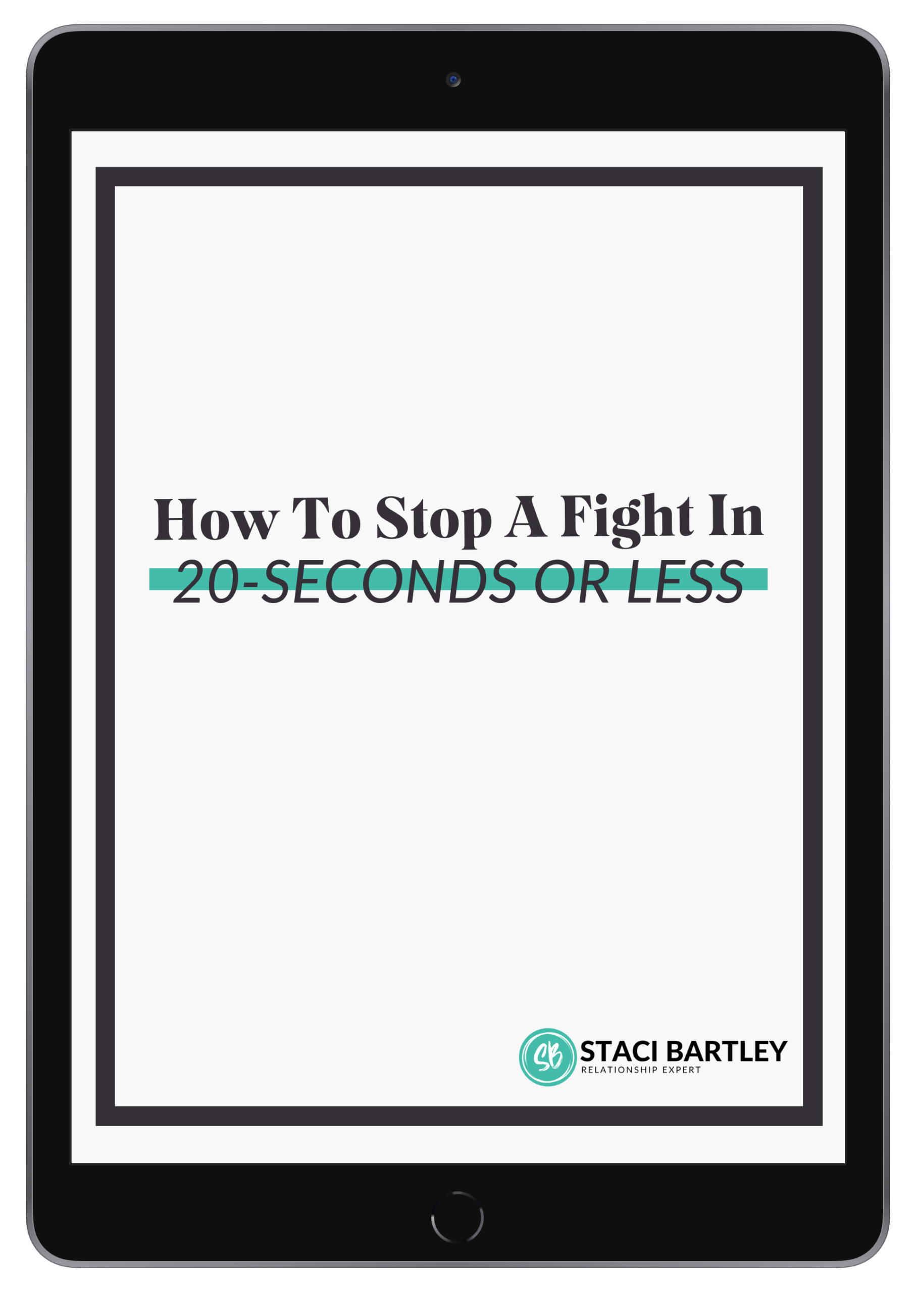 Copy of How To Stop A Fight In 20 Seconds_ipad_spacegrey_portrait